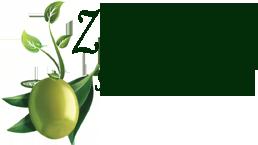 Zaitun.Info