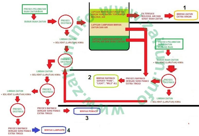 Proses produksi zaitunfo pada ccuart Image collections