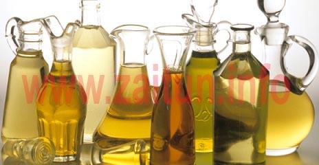 Olive-Oils-Many
