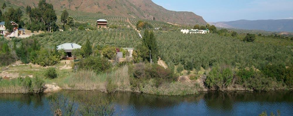 Perkebunan Disuatu Lembah .